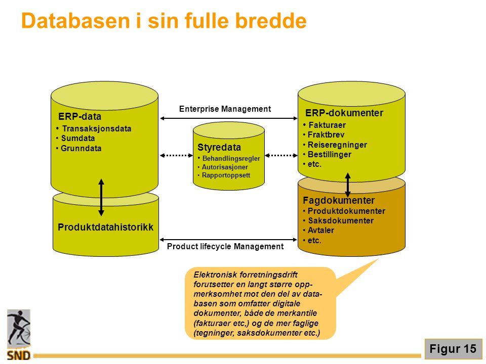 Databasen i sin fulle bredde