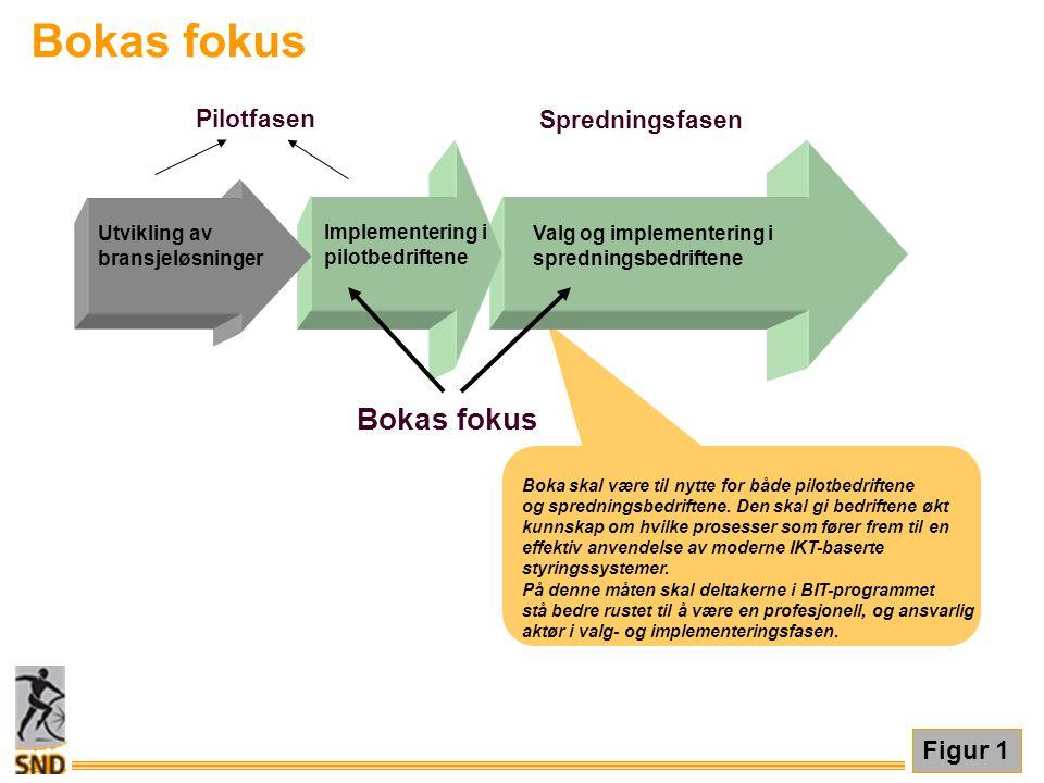 Bokas fokus Bokas fokus Figur 1 Pilotfasen Spredningsfasen
