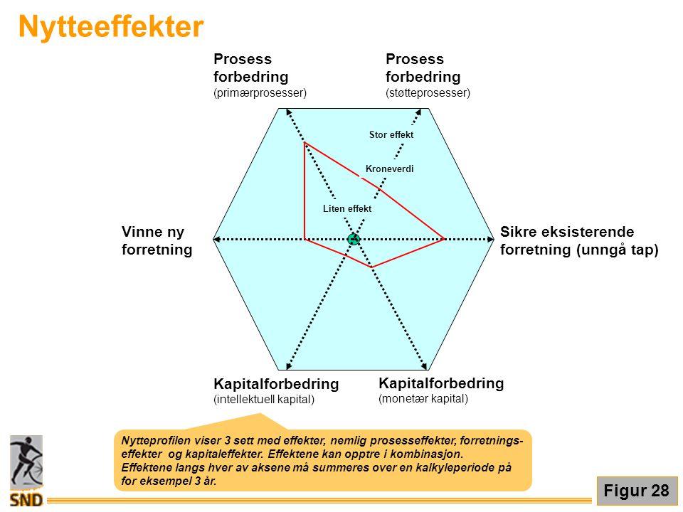 Nytteeffekter Figur 28 Prosess forbedring Sikre eksisterende