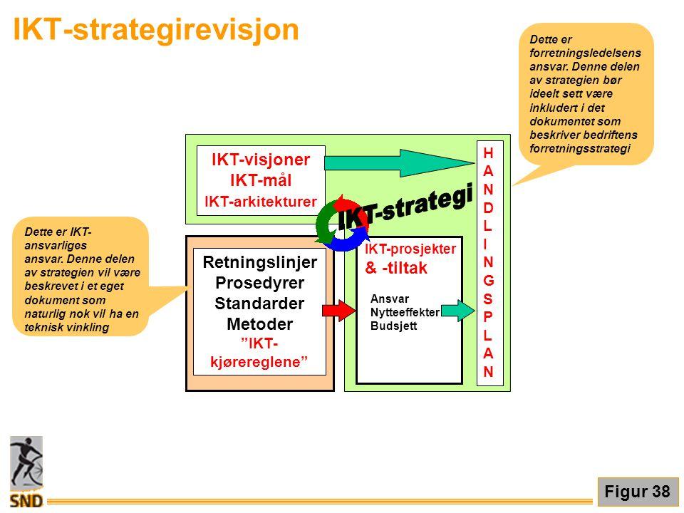 IKT-strategirevisjon