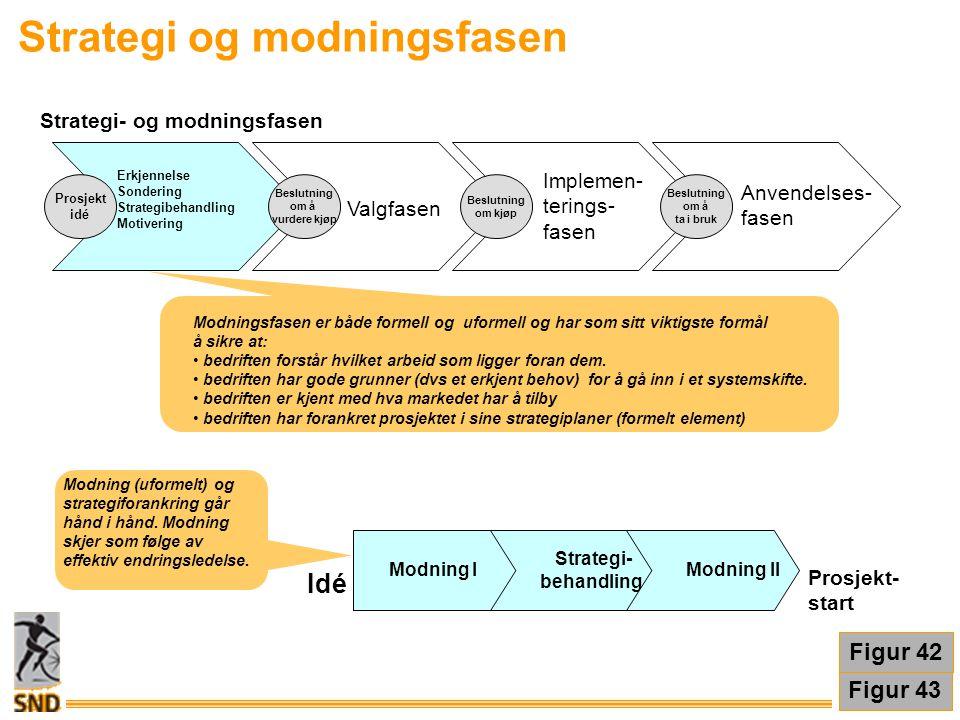 Strategi og modningsfasen