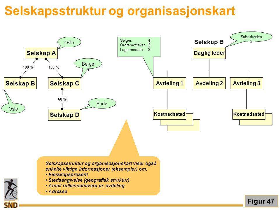 Selskapsstruktur og organisasjonskart