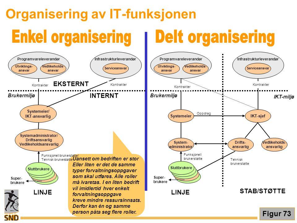 Organisering av IT-funksjonen