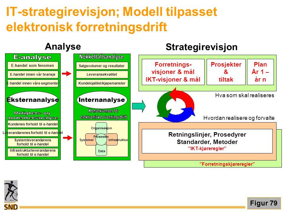 IT-strategirevisjon; Modell tilpasset elektronisk forretningsdrift