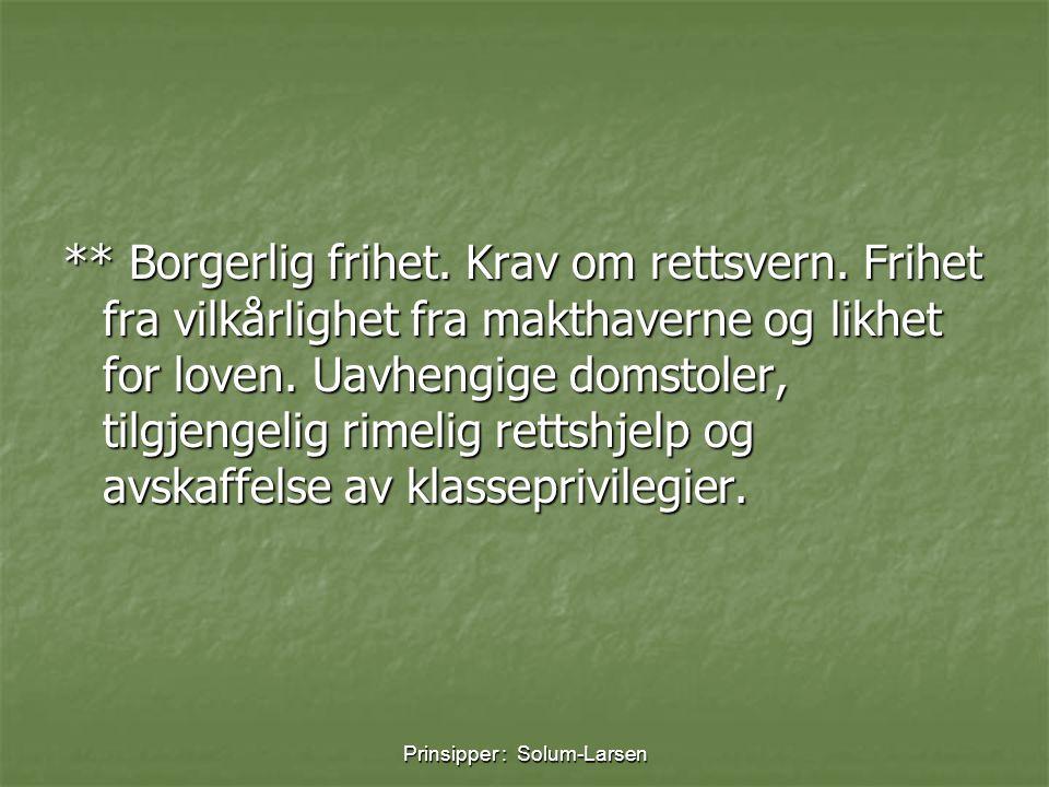 Prinsipper : Solum-Larsen