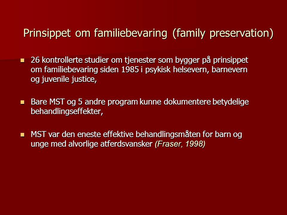 Prinsippet om familiebevaring (family preservation)