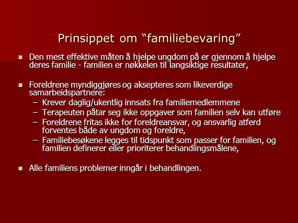 Prinsippet om familiebevaring