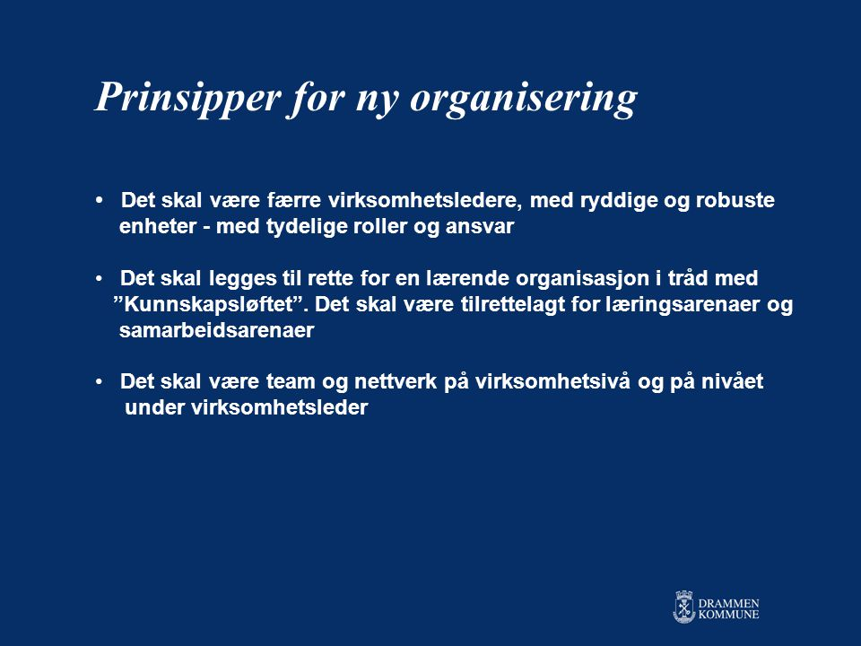 Prinsipper for ny organisering