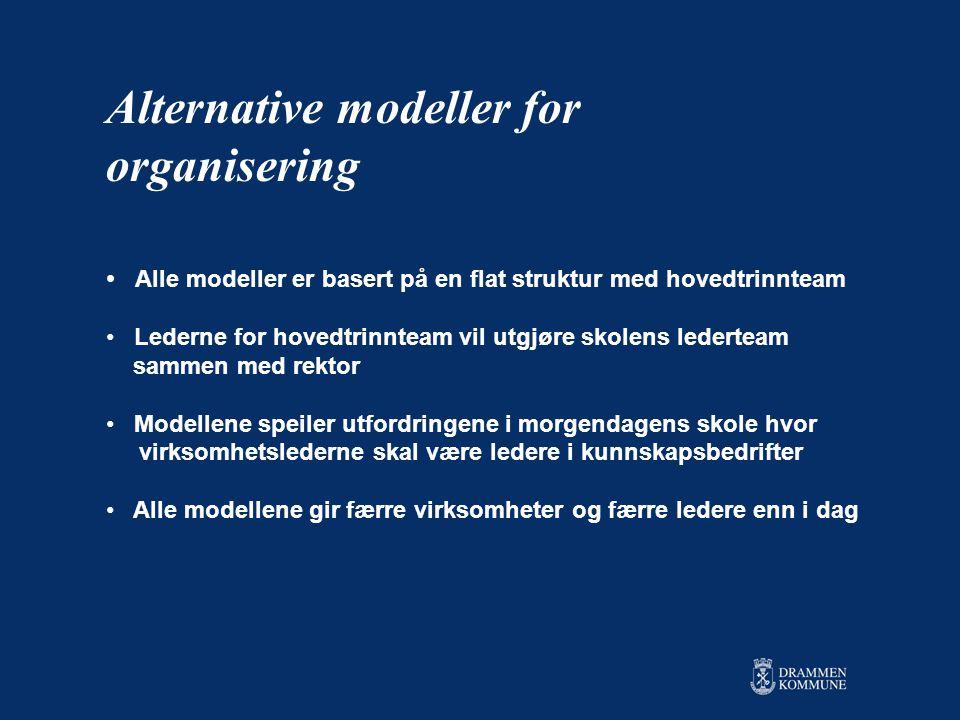Alternative modeller for organisering