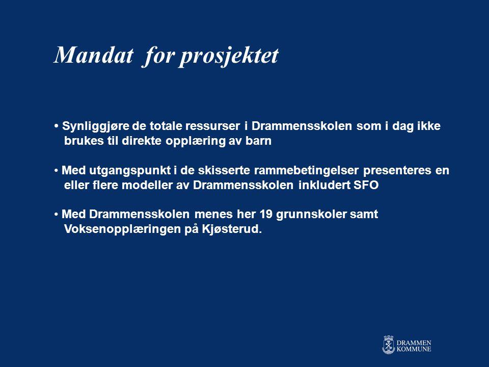 Mandat for prosjektet Synliggjøre de totale ressurser i Drammensskolen som i dag ikke. brukes til direkte opplæring av barn.