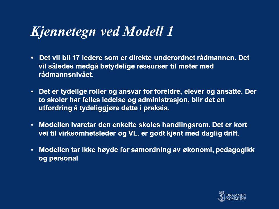 Kjennetegn ved Modell 1 Det vil bli 17 ledere som er direkte underordnet rådmannen. Det. vil således medgå betydelige ressurser til møter med.