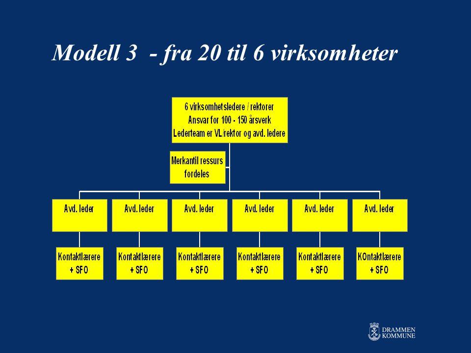 Modell 3 - fra 20 til 6 virksomheter
