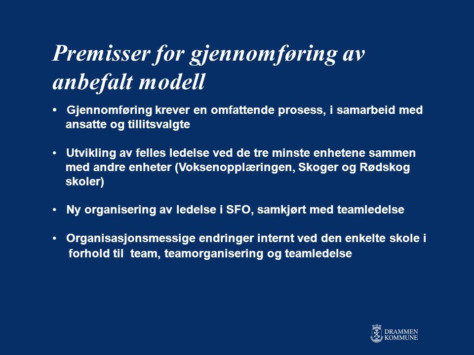 Premisser for gjennomføring av anbefalt modell