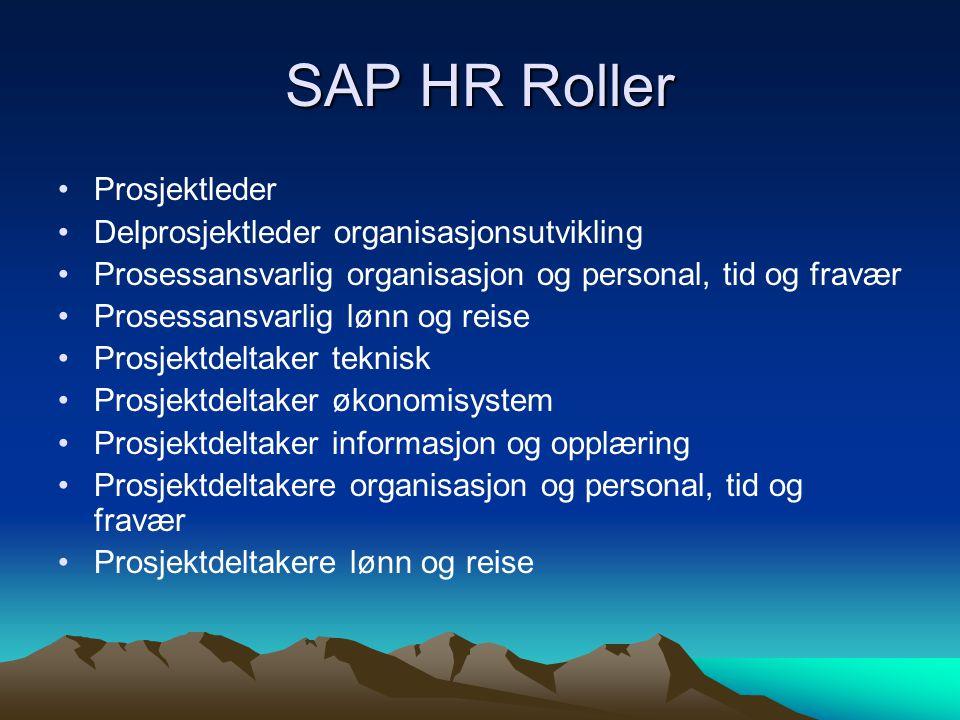 SAP HR Roller Prosjektleder Delprosjektleder organisasjonsutvikling