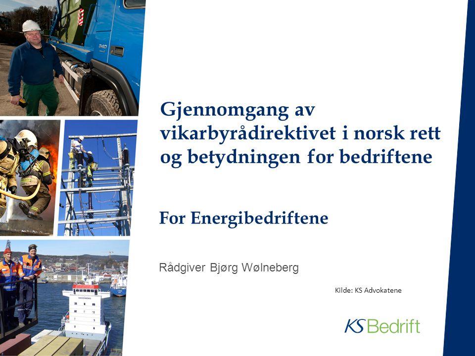 For Energibedriftene Rådgiver Bjørg Wølneberg