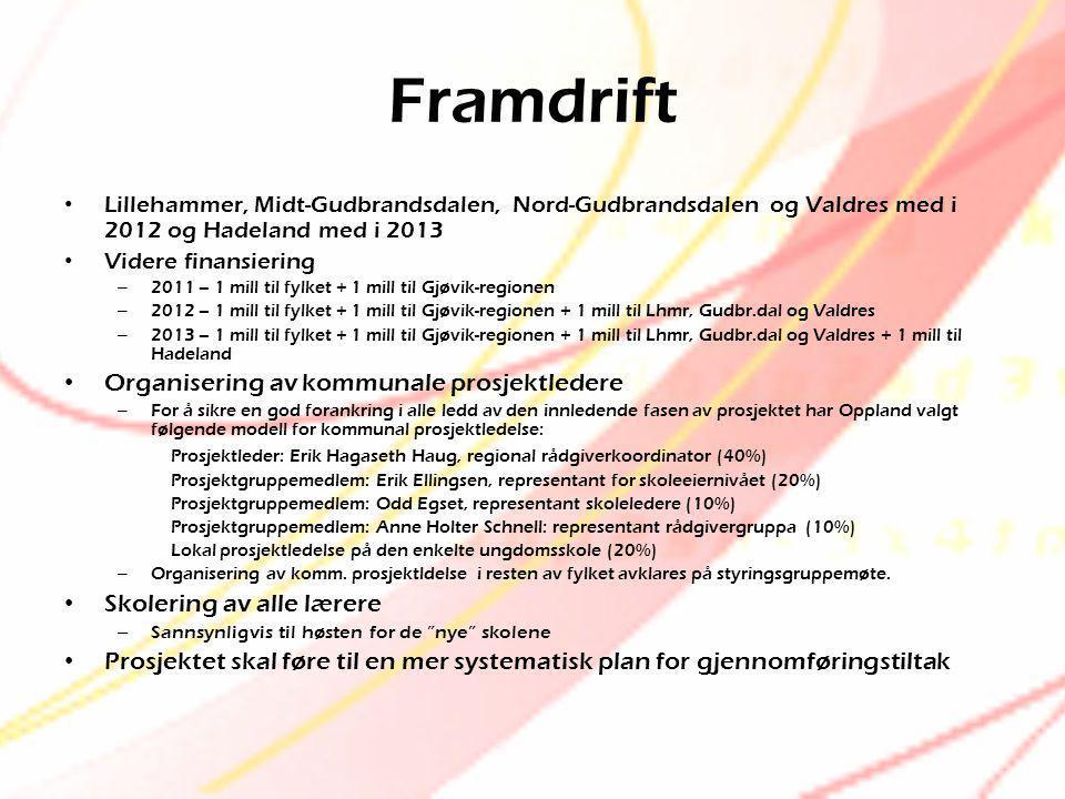 Framdrift Organisering av kommunale prosjektledere