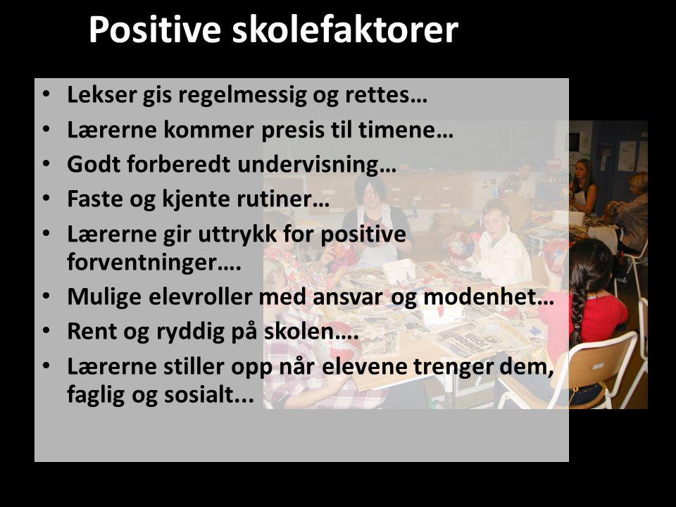 Positive skolefaktorer: