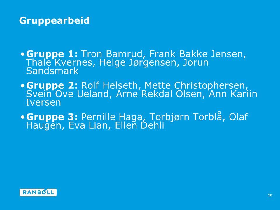 Gruppearbeid Gruppe 1: Tron Bamrud, Frank Bakke Jensen, Thale Kvernes, Helge Jørgensen, Jorun Sandsmark.