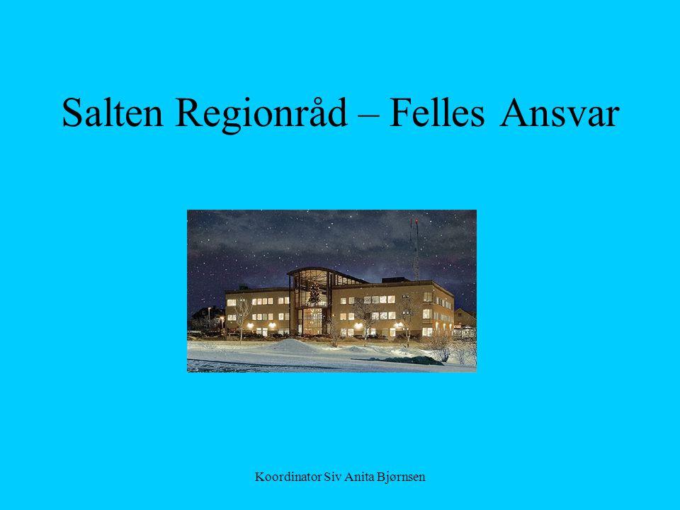 Salten Regionråd – Felles Ansvar