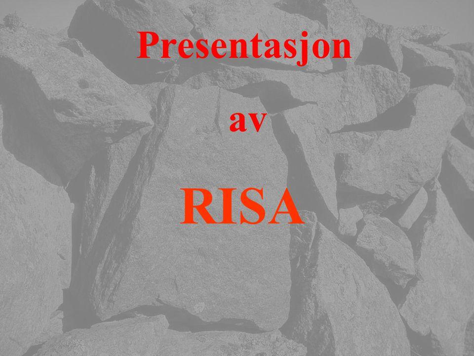 Presentasjon av RISA Eier Bjarne Risa