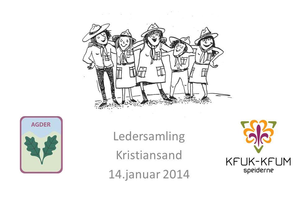Ledersamling Kristiansand 14.januar 2014