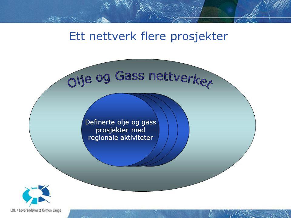 Ett nettverk flere prosjekter