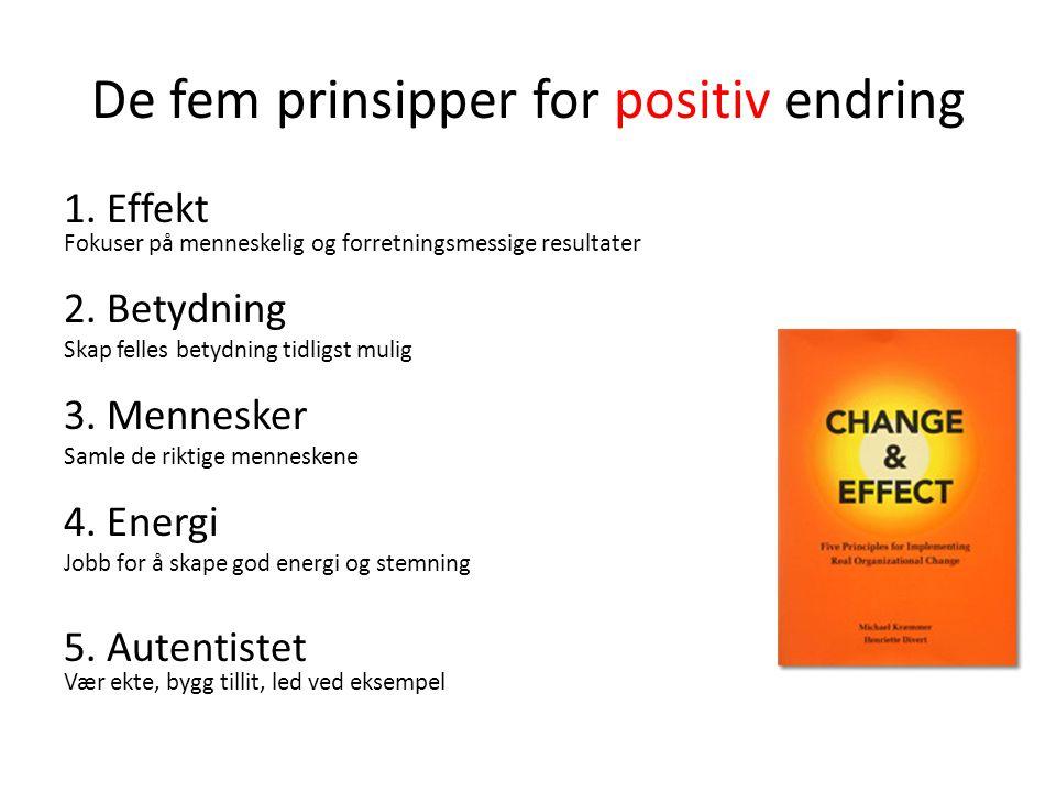 De fem prinsipper for positiv endring