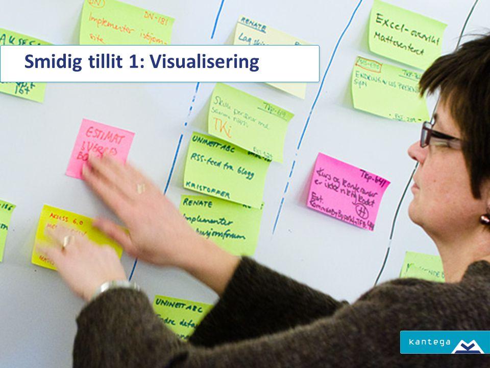 Smidig tillit 1: Visualisering