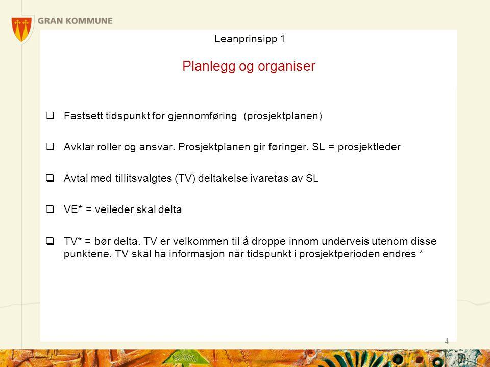 Leanprinsipp 1 Planlegg og organiser