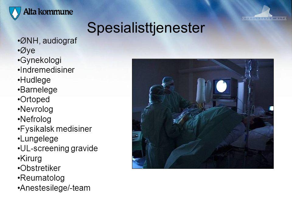 Spesialisttjenester ØNH, audiograf Øye Gynekologi Indremedisiner