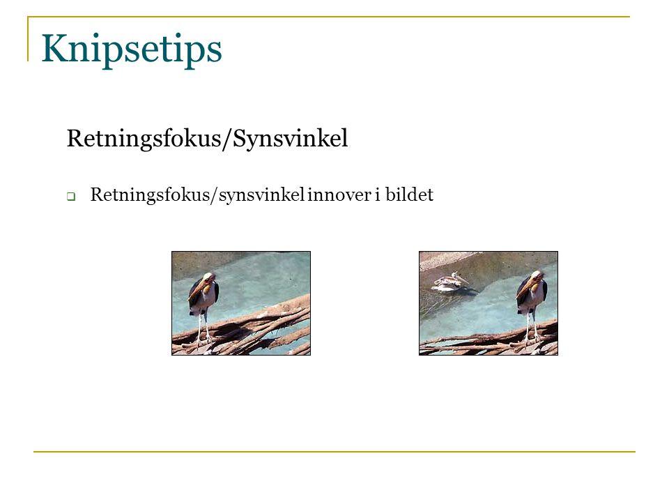 Knipsetips Retningsfokus/Synsvinkel