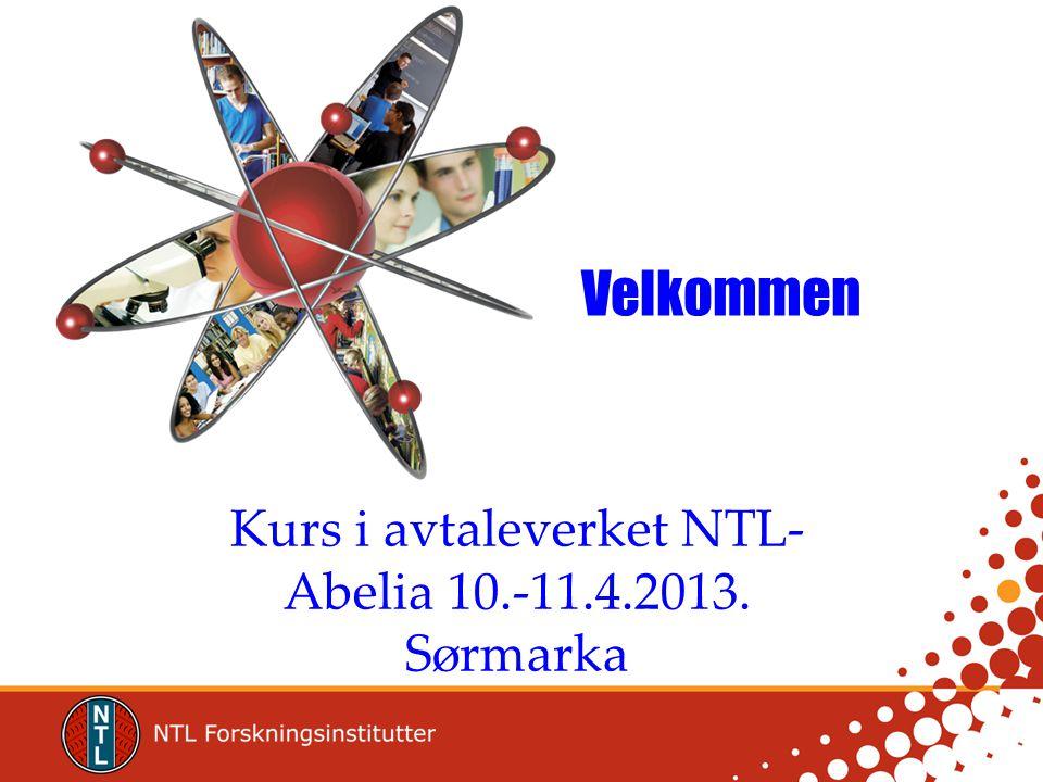 Kurs i avtaleverket NTL-Abelia 10.-11.4.2013. Sørmarka