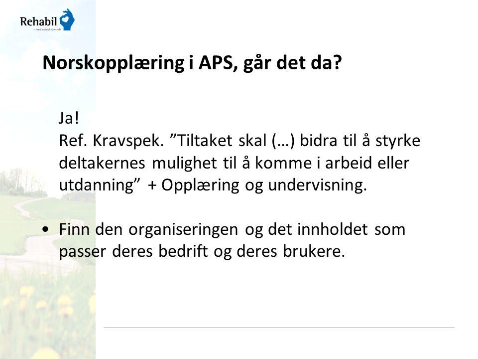 Norskopplæring i APS, går det da