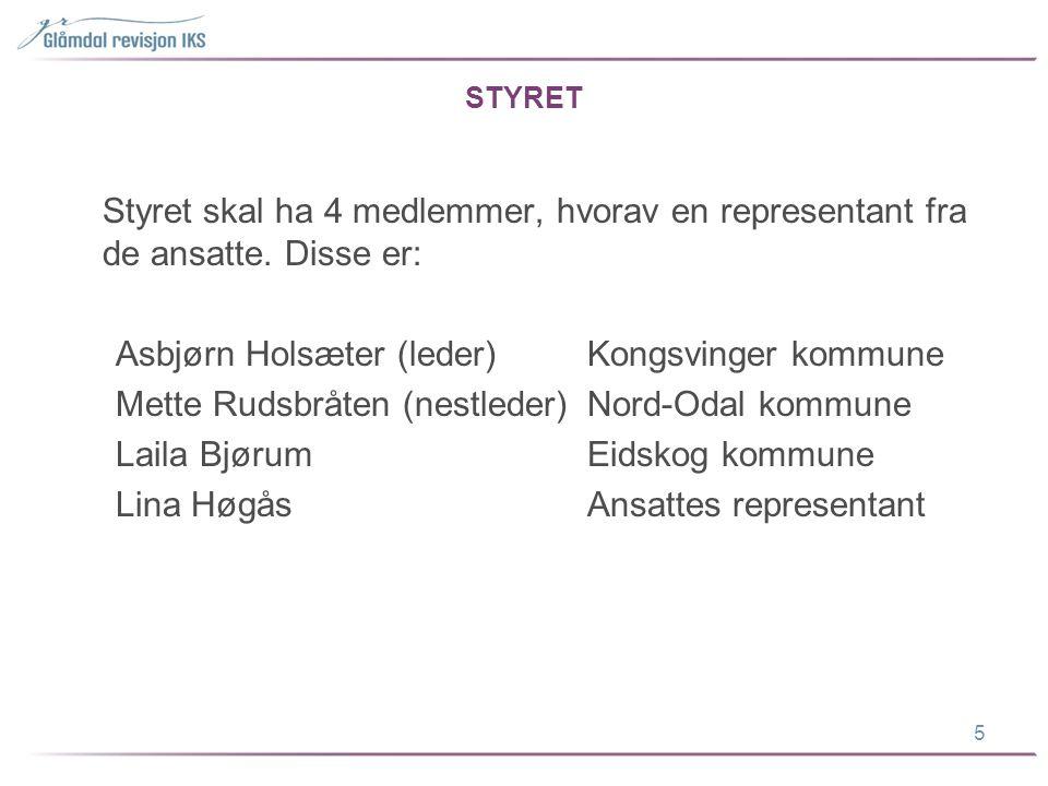 Asbjørn Holsæter (leder) Kongsvinger kommune