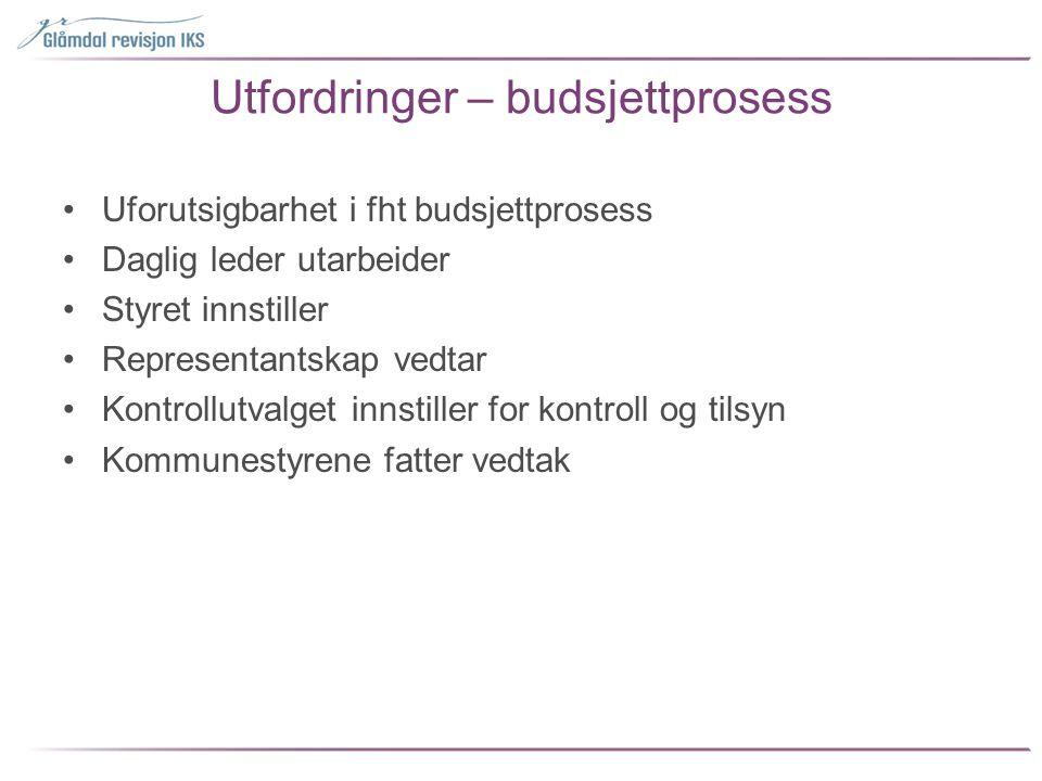Utfordringer – budsjettprosess
