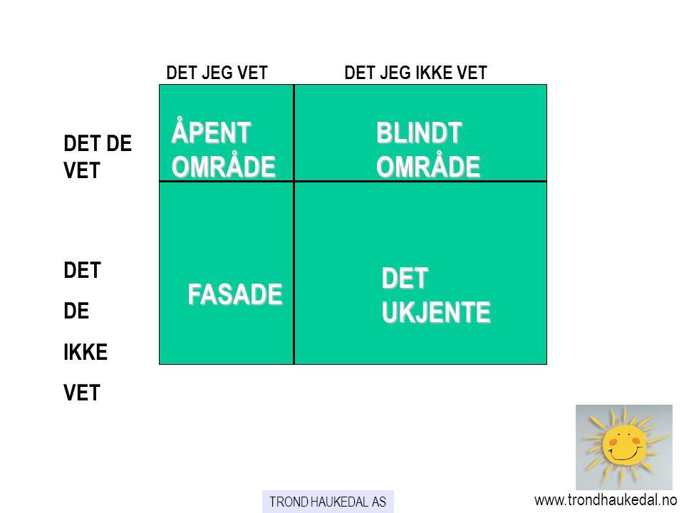 ÅPENT OMRÅDE BLINDT OMRÅDE DET UKJENTE FASADE DET DE VET DET DE IKKE