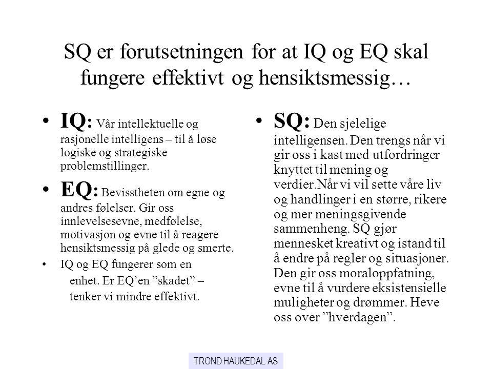 SQ er forutsetningen for at IQ og EQ skal fungere effektivt og hensiktsmessig…