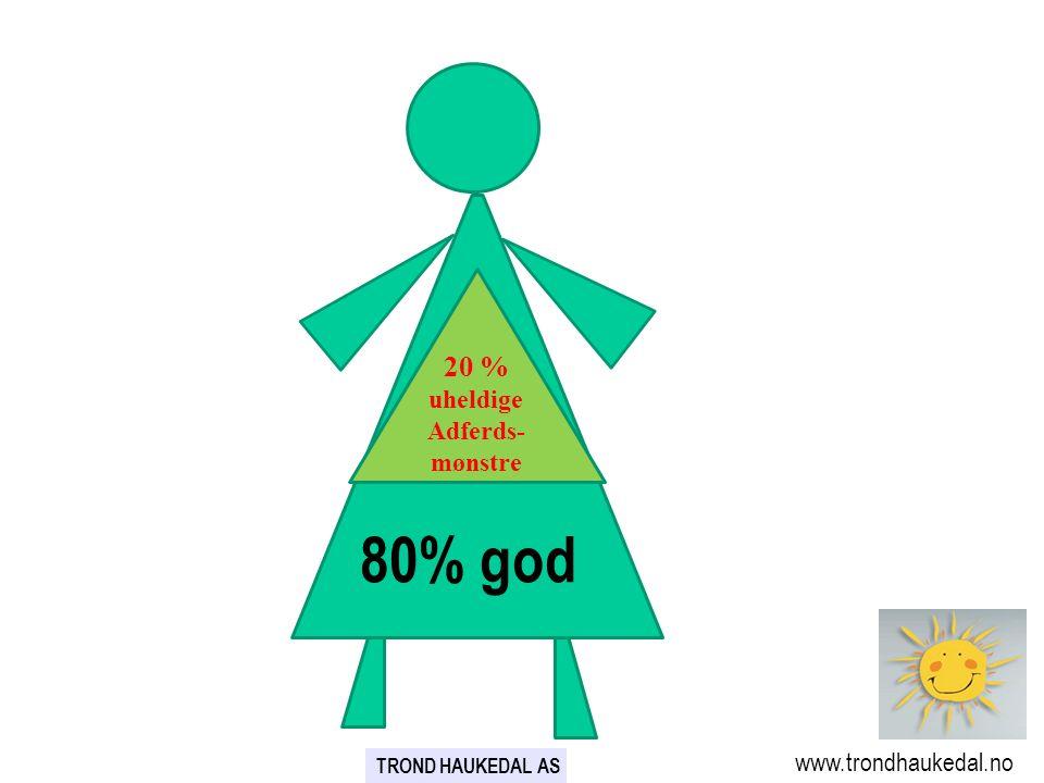 80% god 80% 20 % uheldige Adferds-mønstre www.trondhaukedal.no