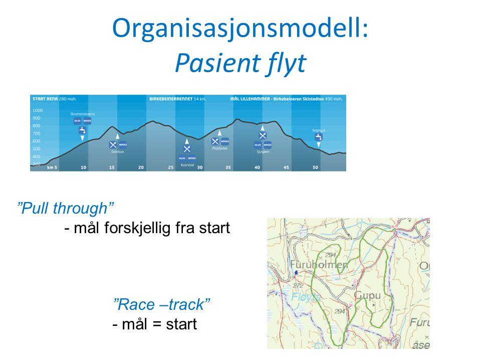 Organisasjonsmodell: Pasient flyt
