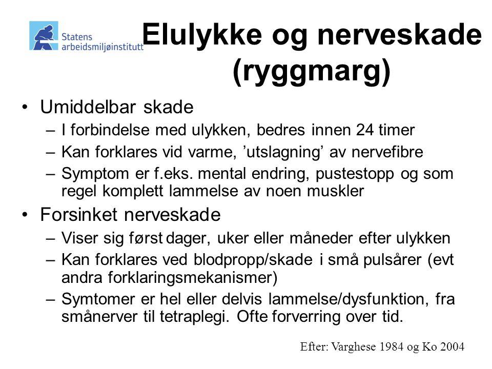 Elulykke og nerveskade (ryggmarg)