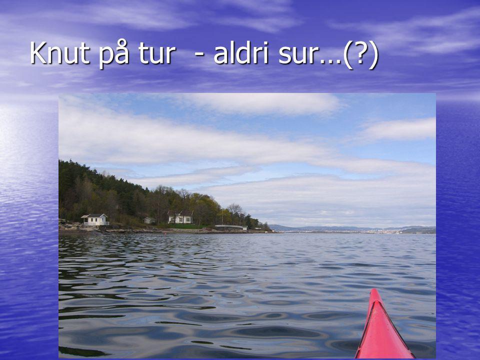 Knut på tur - aldri sur…( )
