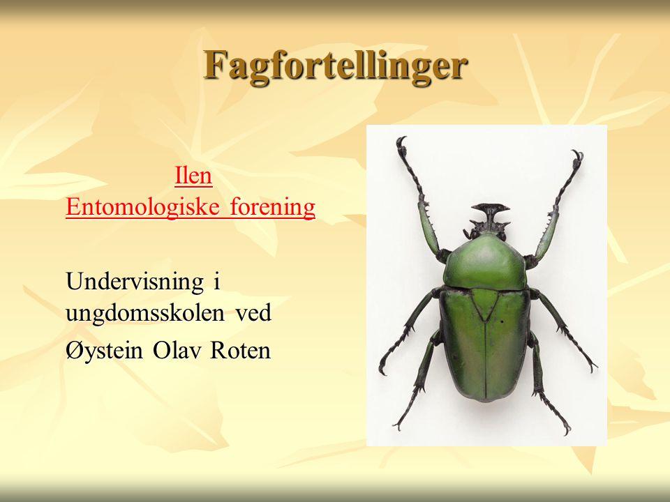 Fagfortellinger Ilen Entomologiske forening
