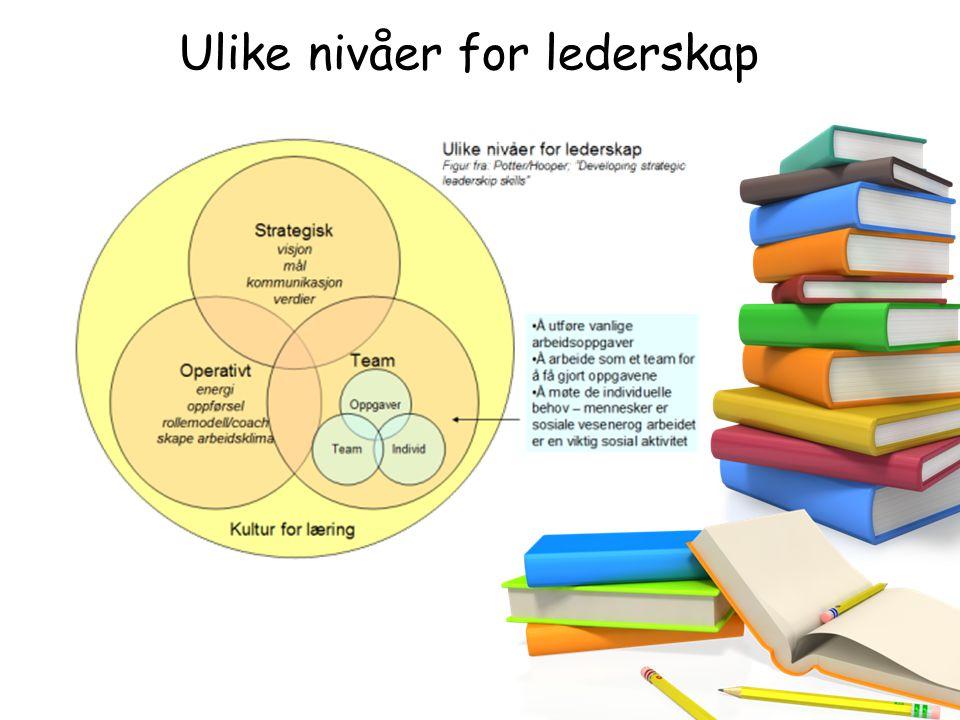 Ulike nivåer for lederskap