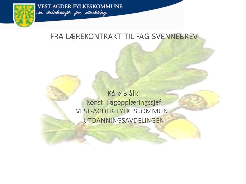 FRA LÆREKONTRAKT TIL FAG-SVENNEBREV Kåre Blålid Konst