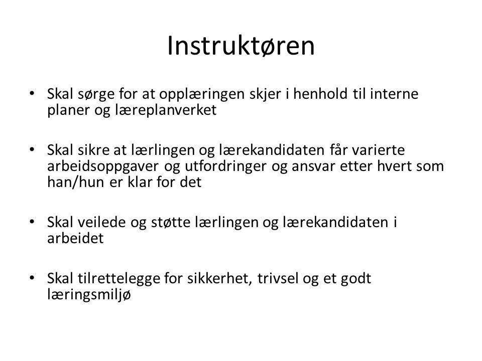 Instruktøren Skal sørge for at opplæringen skjer i henhold til interne planer og læreplanverket.