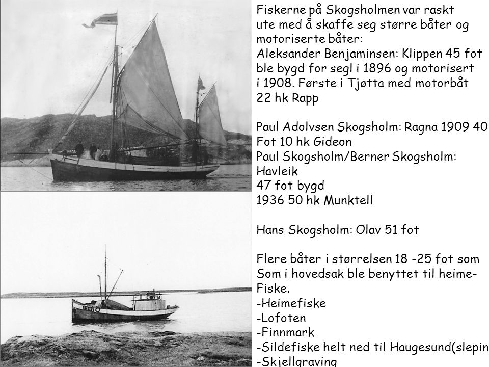 Fiskerne på Skogsholmen var raskt
