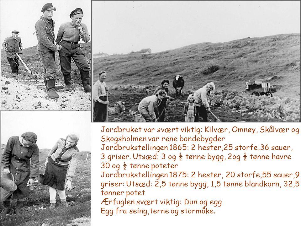 Jordbruket var svært viktig: Kilvær, Omnøy, Skålvær og