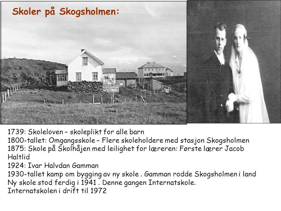 Skoler på Skogsholmen: