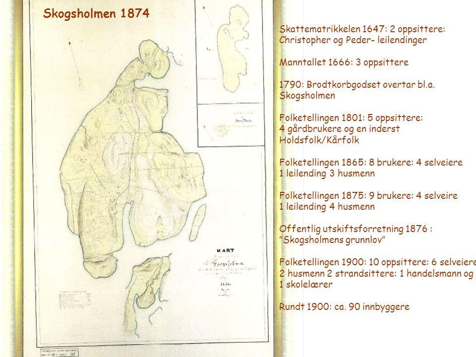 Skogsholmen 1874 Skattematrikkelen 1647: 2 oppsittere: