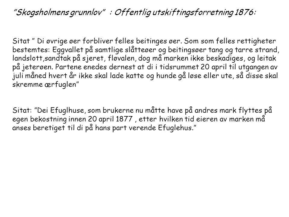 Skogsholmens grunnlov : Offentlig utskiftingsforretning 1876: